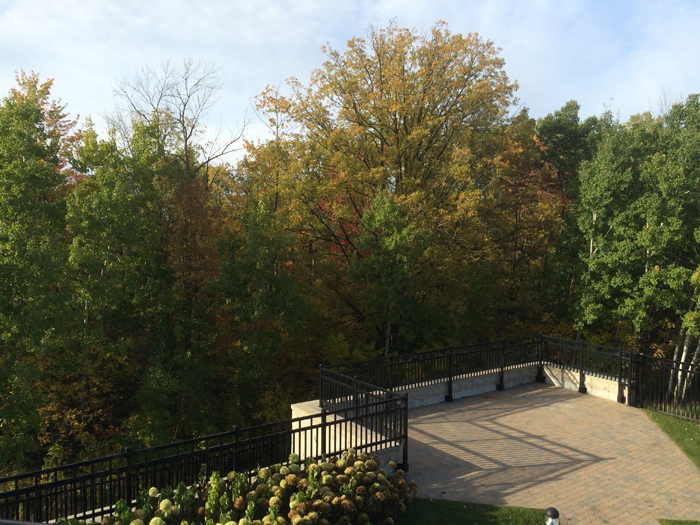 fall view w terrace 2