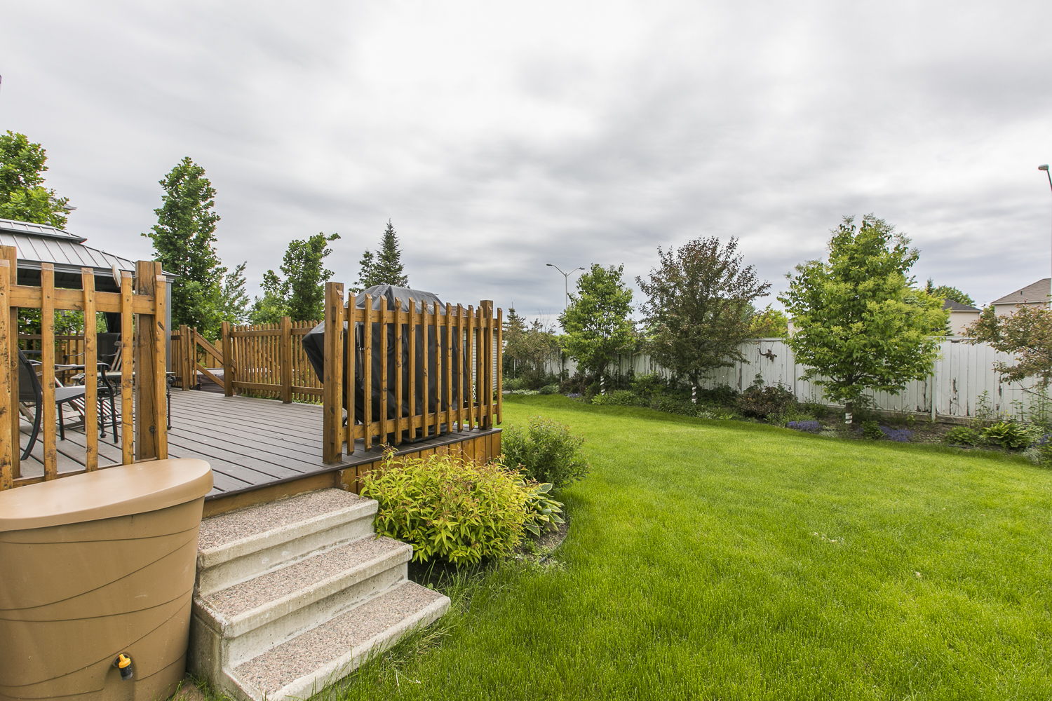 Backyard deck and view